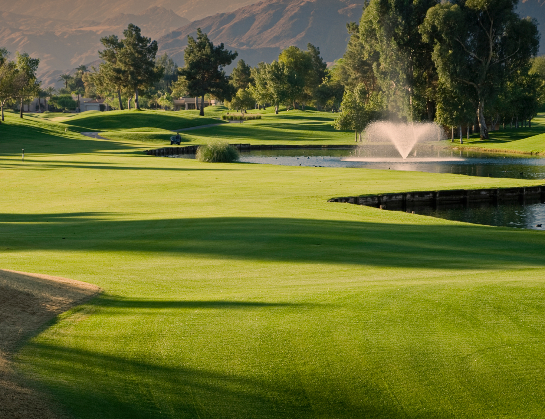 Variations in soil or water composition can have profound effects on turf health