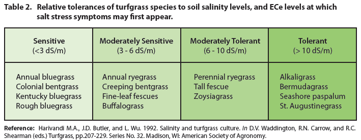 Turfgrass Tolerance of Soil Salinity