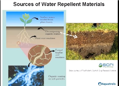 Understand Water Repellency in Soils