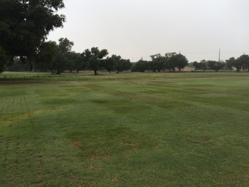 Salinity Golf Course Fairways Trial Texas Tech