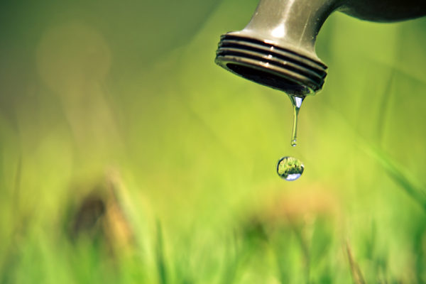 Doing Your Bit for Water Conservation