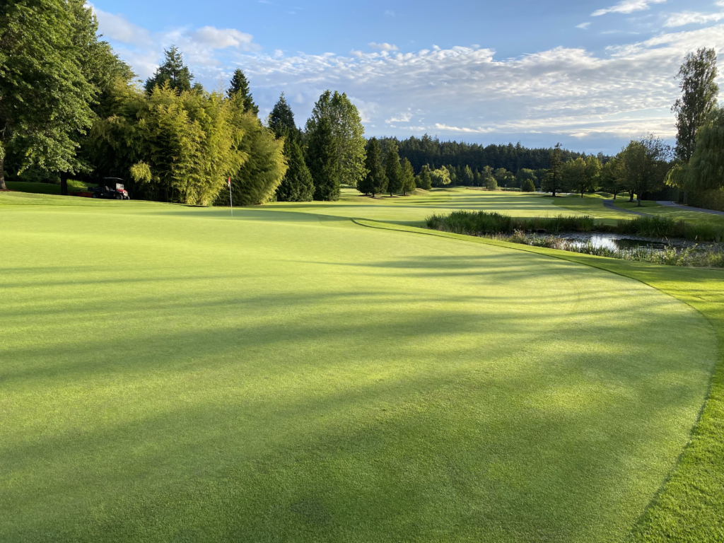 Cordova Bay Golf Course after implementing Redox Program.