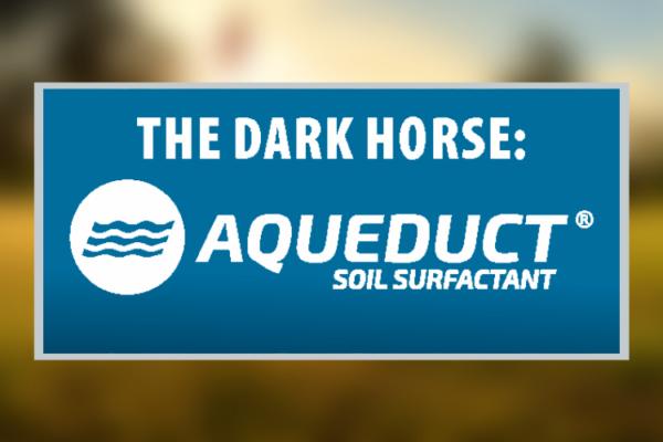 The Dark Horse: Aqueduct Sprayable